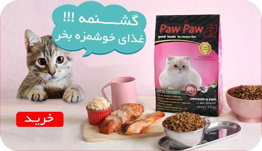 بنر فروش ویژه غذای حیوانات خانگی گربه